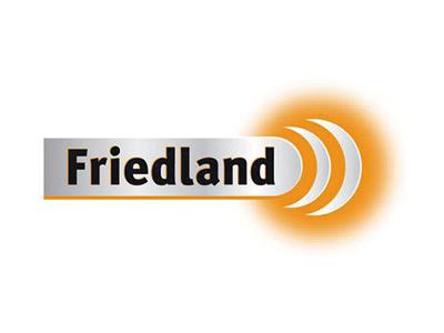 friedland logo